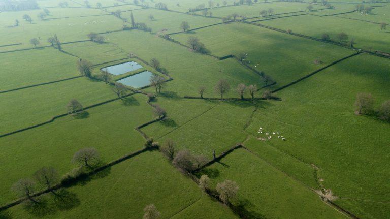 Photo aérienne bourgogne par drone campagne et arbres vue du dessus